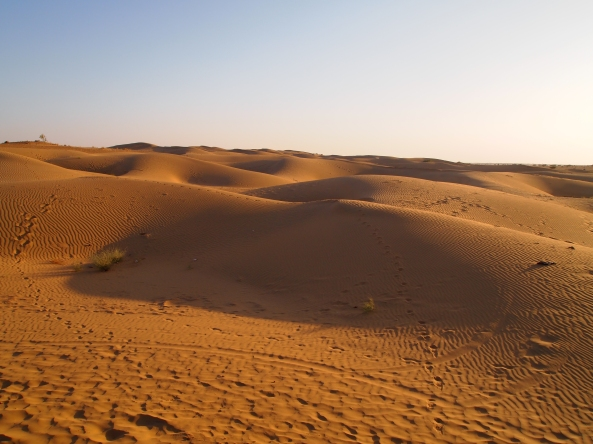 the desert of Jaisalmer
