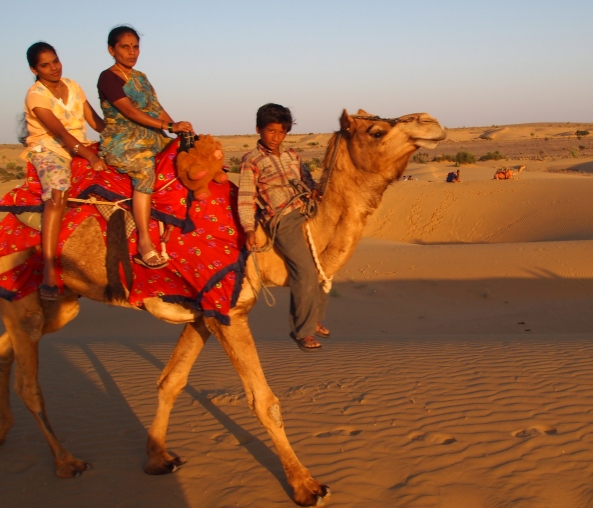 random people riding a camel