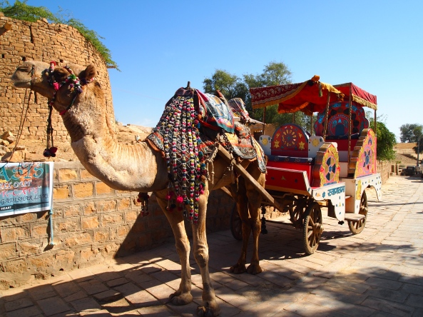 a decked out camel and carriage