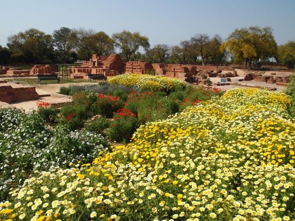 the gardens & ruins of Sarnath