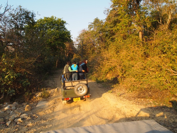 the dirt roads through Corbett