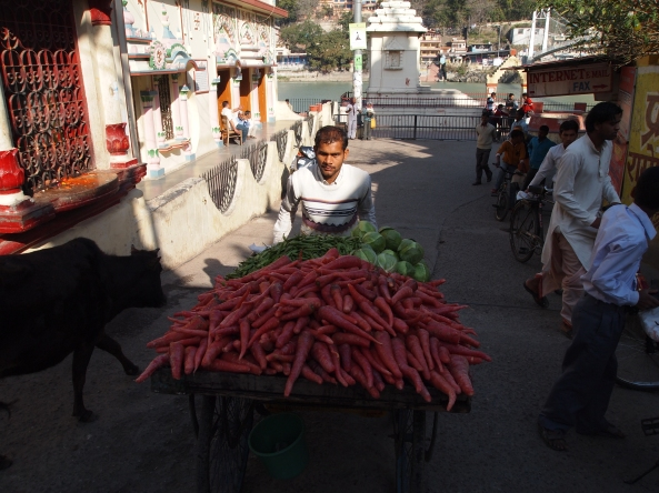 red carrots??