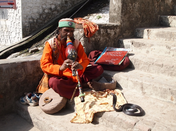 the snake charmer on the steps near Devraj Coffee Corner