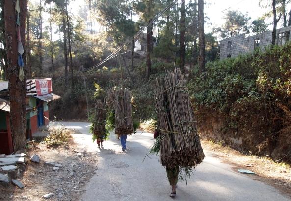 Ladies carrying bundles of wood