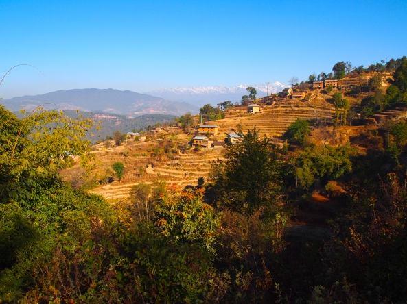 terraces and the Himalayas