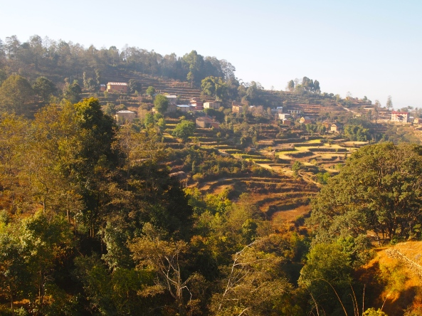 more terraced hills
