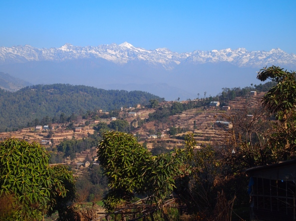 the Himalayas rise like an apparition over the Central Hills