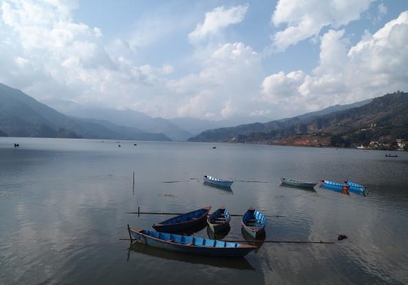 boats on Phewa Tal