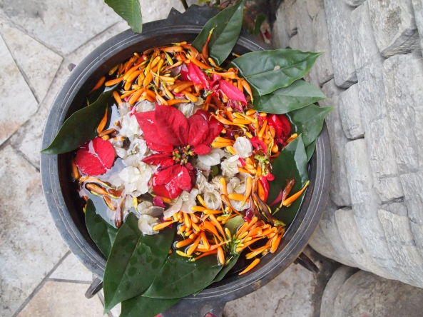 flowers in a bowl outside of Moondance